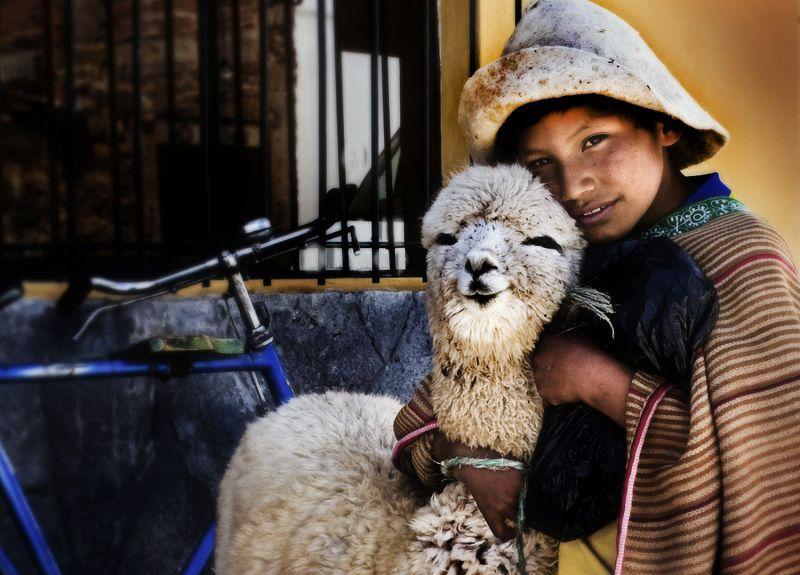 Peruanischer Junge mit Lama
