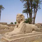 Sphingen Allee beim Luxor Tempel