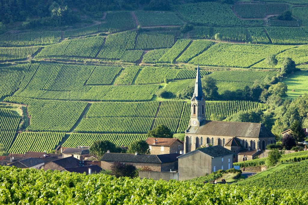 Burgund: Eine reiche Geschichte vor prächtiger Kulisse