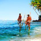 Sri Lanka überzeugt mit tropischen Temperaturen und wilden Tieren