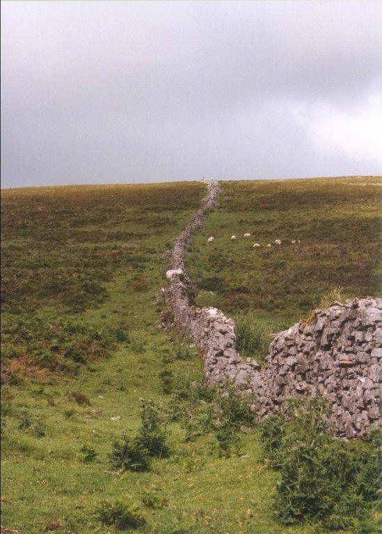 Ireland-Sligo-Knocknarea-mountain-dry-stone-wall-with-sheep-passing-through.jpg