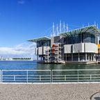 Das Oceanário in Lissabon