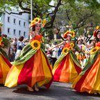 """Blumenfest """"Festa da Flor""""- die ganze Stadt erblüht in märchenhafter Atmosphäre"""
