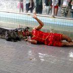 Krokodilpark