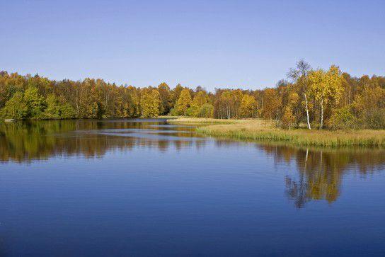 Rotes Moor(Rhön)