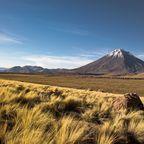 Chile im Dezember verspricht warme Temperaturen und spektakuläre Feuerwerke.