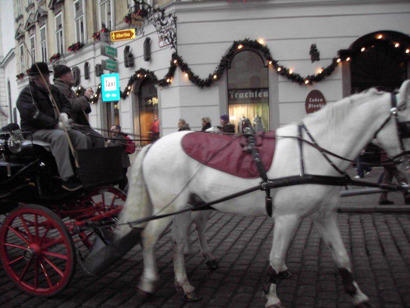 City_Wien (16).JPG