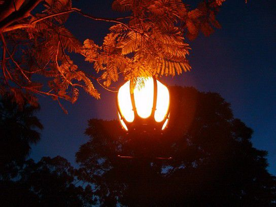 Laterne im Kings Park, Perth