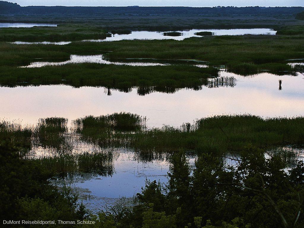 Priroden Rezervat Srebarna