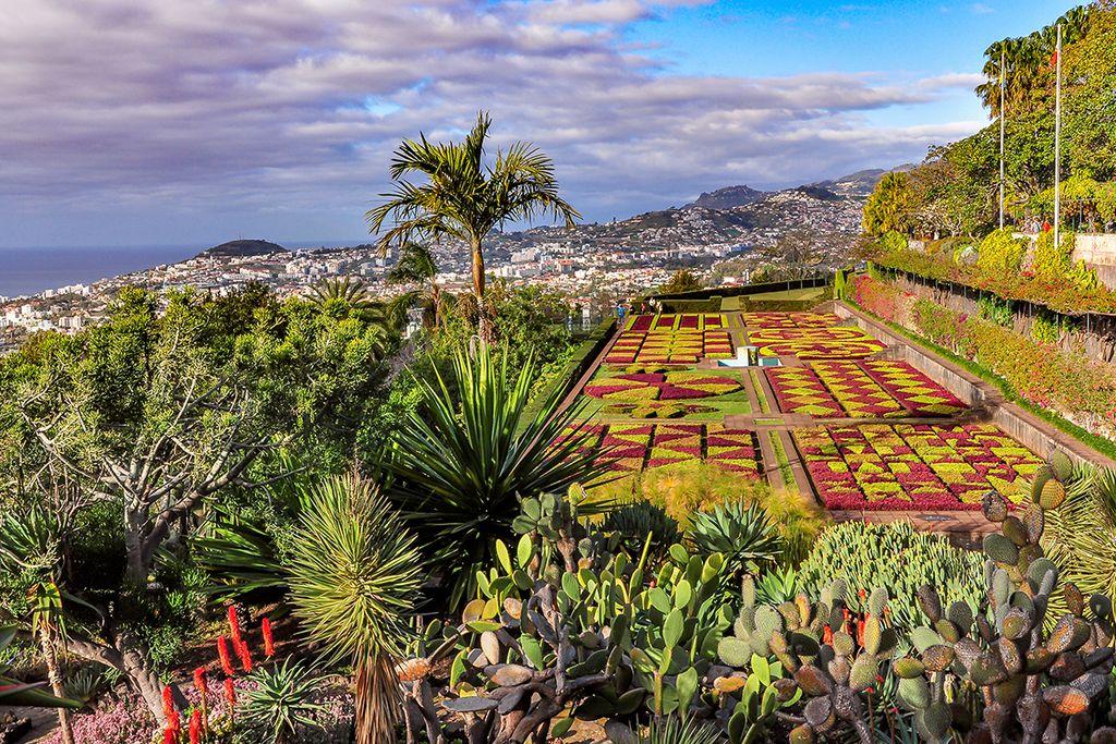Botanischer Garten- ganzjähriges Frühlingsgefühl mit wunderschöner Aussicht