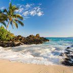 Nicht nur unter Surfern gilt Hawaii als ein Traumziel