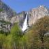 Das Wasser des Yosemite Creek fällt an den Upper Falls 435 m in die Tiefe