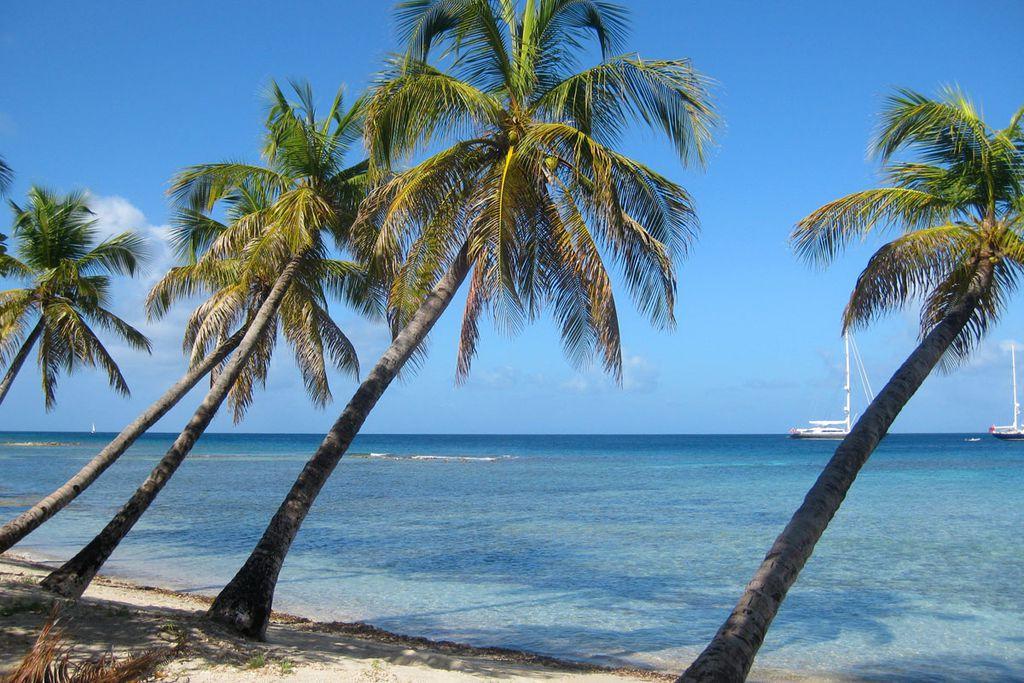 Karibik-Traum
