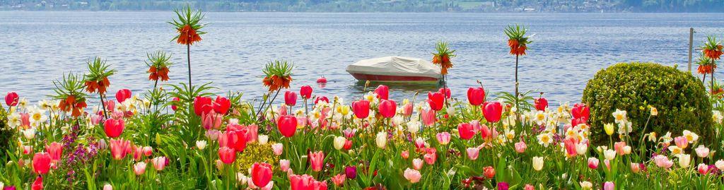 So schön ist der Frühling am Bodensee!