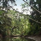 Cigenter River