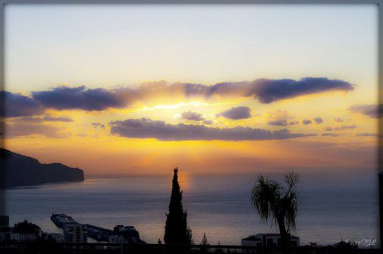 Good Morning Funchal