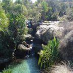 Madagassisches Paradies