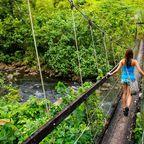 Zurück zur Bilderübersicht Fidschi
