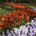 Gärten der Vielfalt