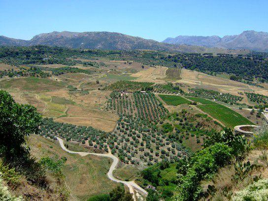 Andalusische Landschaft von oben