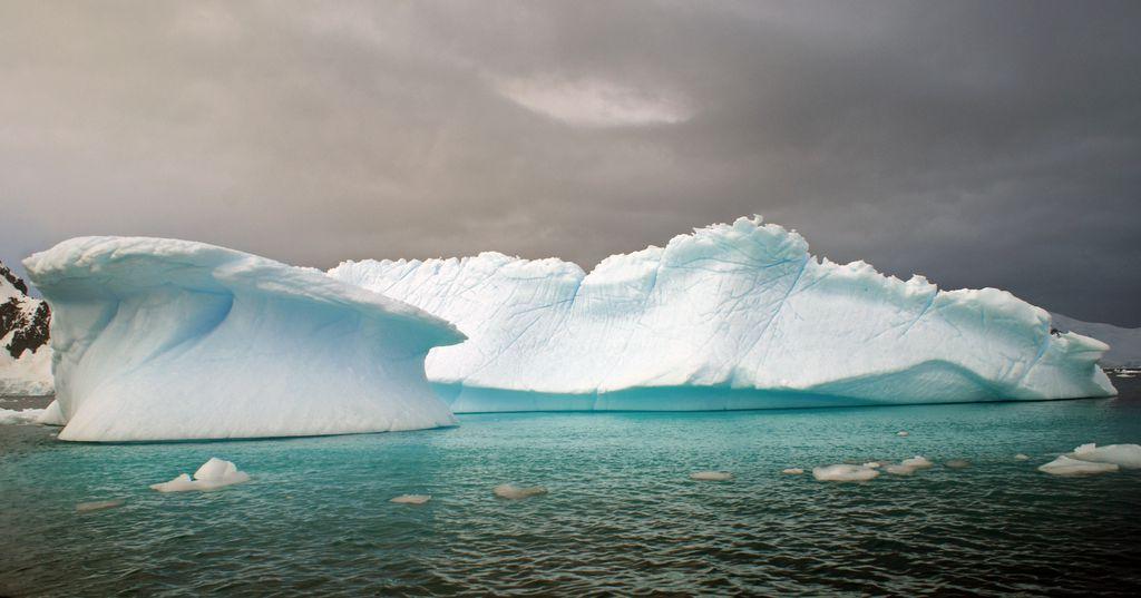in Paradise Bay, Antarktis