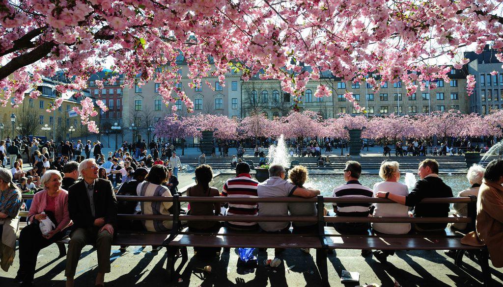 Zufriedene Besucher des Stockholmer Kungsträdgårdens.