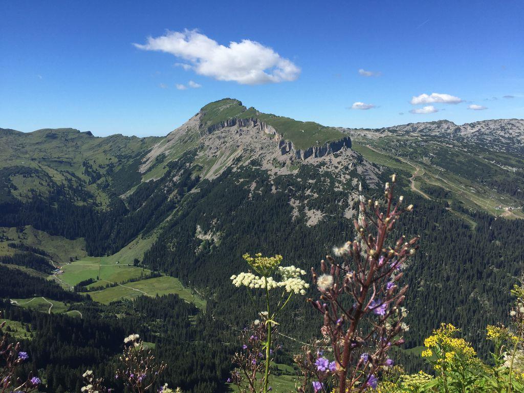 Einzigartiges Wander- und Naturschutzgebiet am Hohen Ifen und Gottesackerplateau