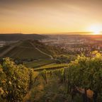 Zurück zur Bilderübersicht Stuttgart