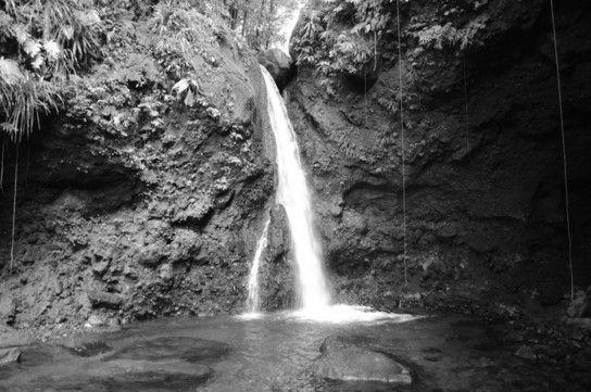 Hibiscus Falls