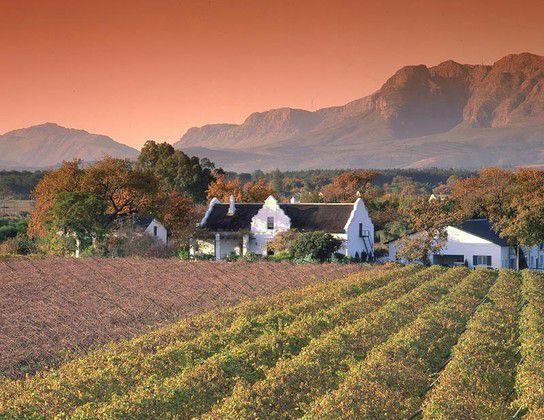 Weingut am Kap