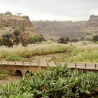 Zuckerrohr-Farm auf Santiago