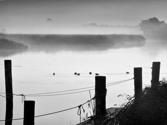 Nebelmorgen am Wasser