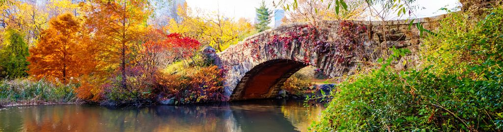 Die Gapstow Bridge im Central Park