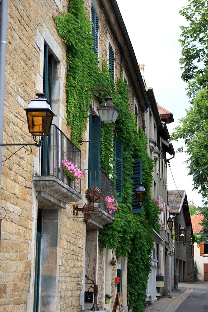 Le Gardien de La Maison Pasteur in Arbois