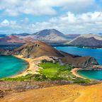 Zurück zur Bilderübersicht Galapagos