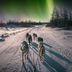 Die schönsten Polarlicht-Orte: Alaska