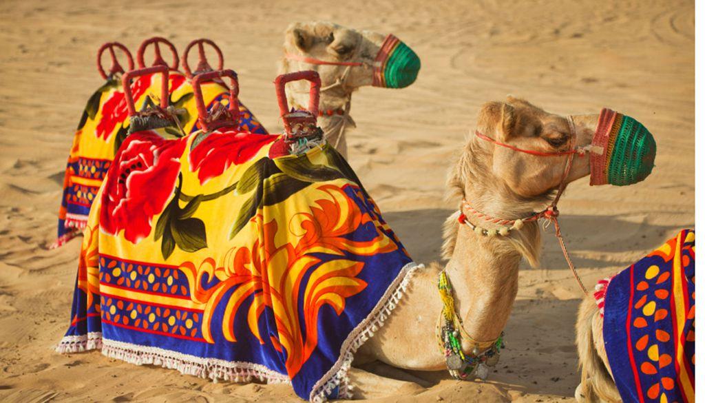 Hitze und Sonnenschein während Europa friert: die Vereinigten Arabischen Emirate.