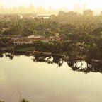 Miami Sundown