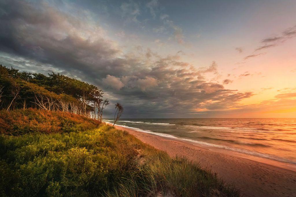 Die wilde Schönheit der Ostsee auf dem Darß erleben