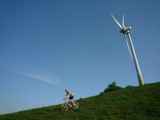 Grüner Heiner mit Windrad