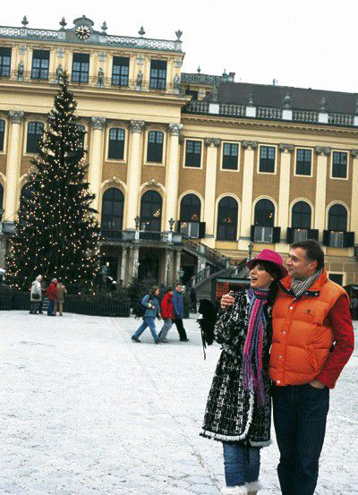 Weihnachtsbaum vor Schloss Schönbrunn