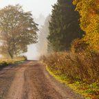 Der Harz im Herbst