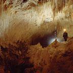 Die Luckie Strike Höhle in Waitomo