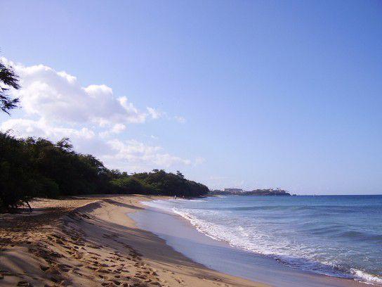 Wold Maui