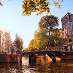 Zurück zur Bilderübersicht Niederlande