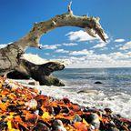 Herbstzeit an der Küste