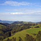 Zurück zur Bilderübersicht Schwarzwald