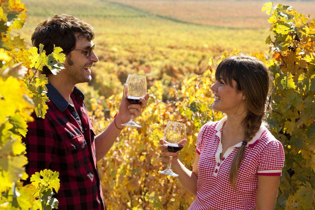 Weinprobe im Valle de Colchagua
