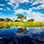 Zurück zur Bilderübersicht Botsuana