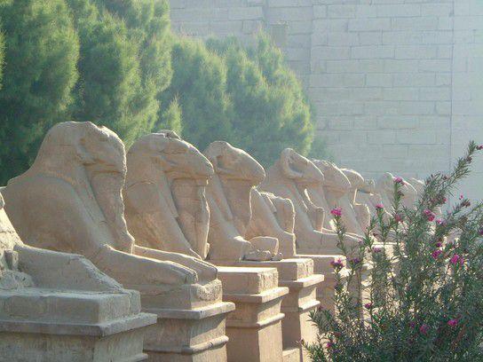 Morgens in Luxor